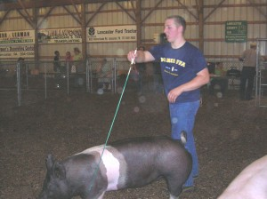 Kaleb showing one of his hogs at the Lampeter Fair.